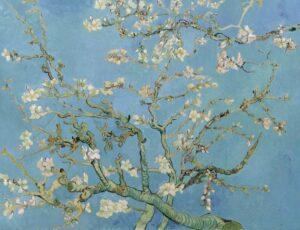 В.Ван Гог.Цветущие ветки миндаля. 1890 г.