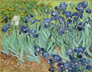 В.Ван Гог.Ирисы.1889 г.
